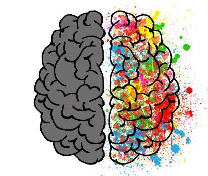 brain-2062049_1920.jpg