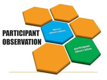 participant-observation-n