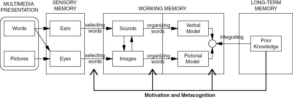 Congnitive theory of multimedia learning